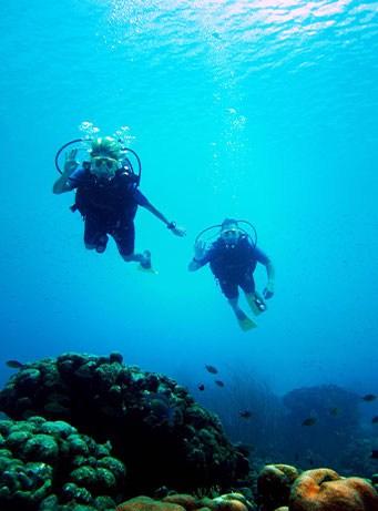 snorkeling scuba diving kayaking in cat island bahamas