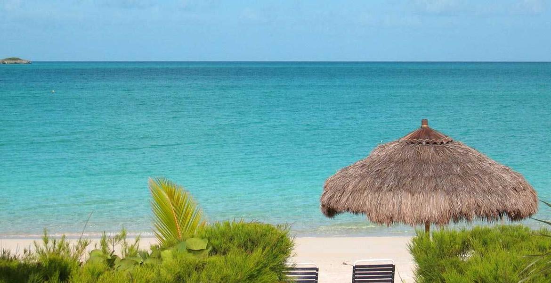 Coconut Palm Cottage